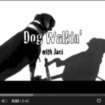 Dog Walkin' with Jaci